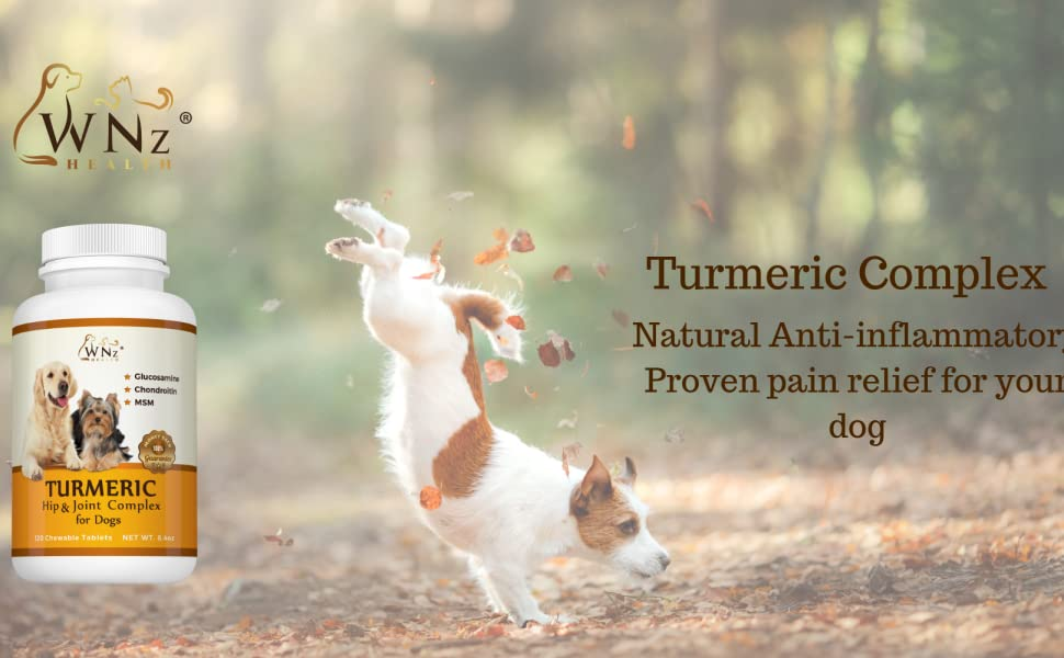 Turmeric for dogs anti inflammatory pain relief
