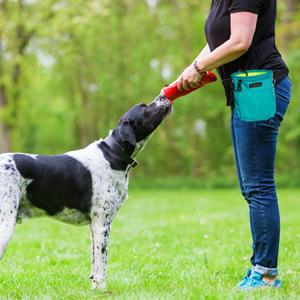 Sac à collation pour chien