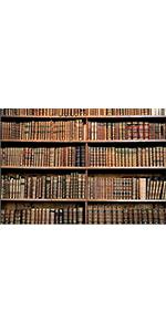 Library Bookshelf Backdrop