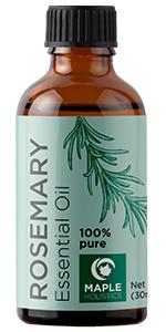 rosemary essential oil maple holistics