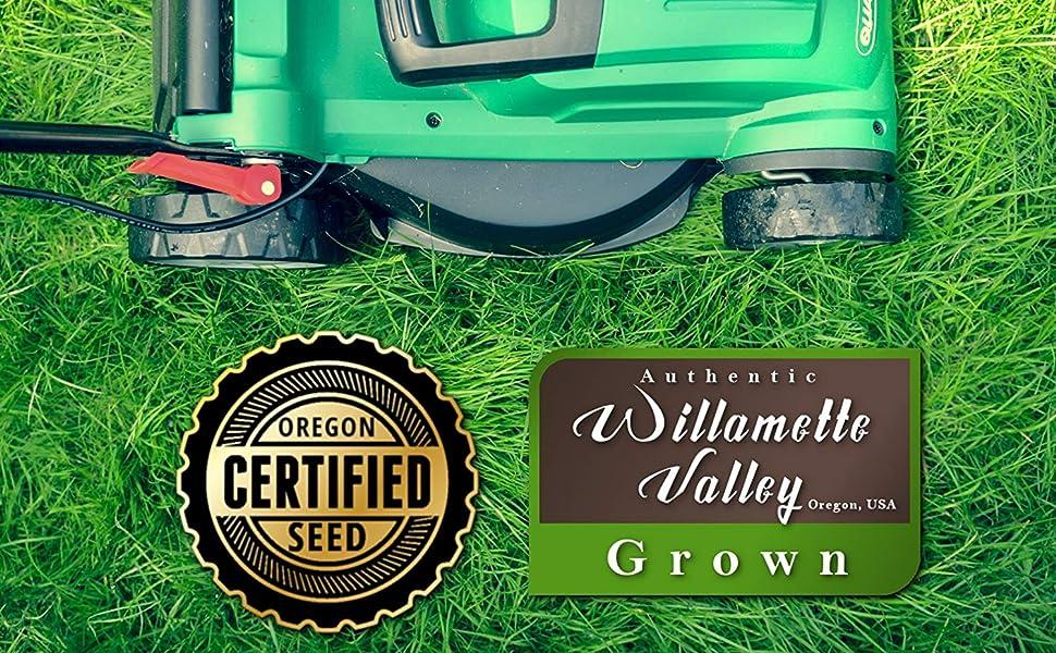 Oregon Certified, Willamette Valley Grown, Eretz K31 Kentucky 31 Seed