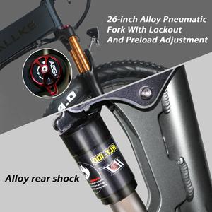 Air pressure shock absorber