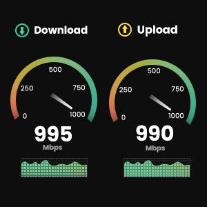 gigabit network adapter