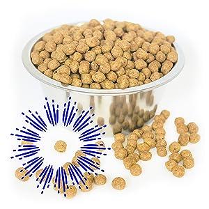 vegetarian meatless plant based senior veg organic free shark tank sensitive allergy supplement