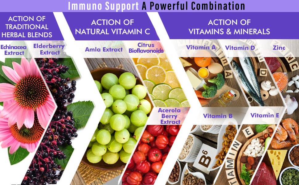 Immuno support herbal vitamin c minerals amazon