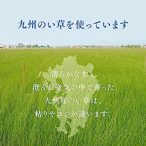 九州産い草