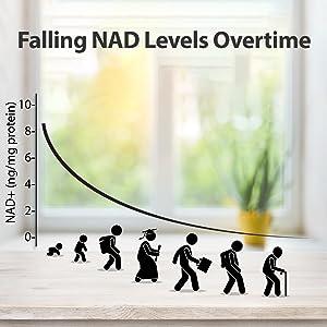 falling nad levels over time nmn nicotinamide mononucleotide booster