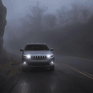 Volkswagen Jetta/VW Golf/VW Cabrio fog lights assembly