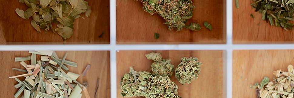herbs herbal