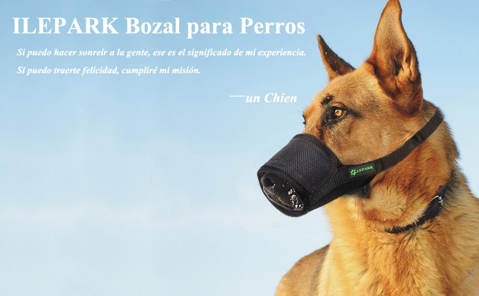 ILEPARK Respirable Bozal de Nylon para Perros Suave Permite Beber ...