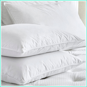 20 x 30 pillow