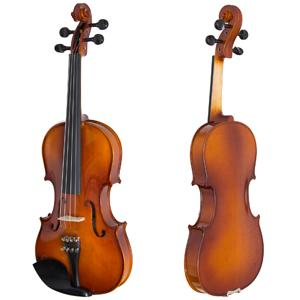 Front and Back view of violin