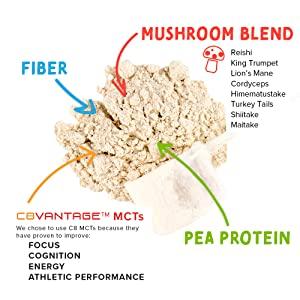 creamy vanilla pea protein