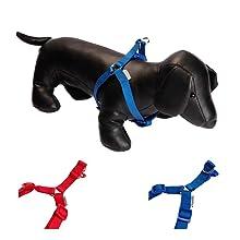 UPDOG Collar para Perro de Cuero Sintético Diferentes tamaños para ...