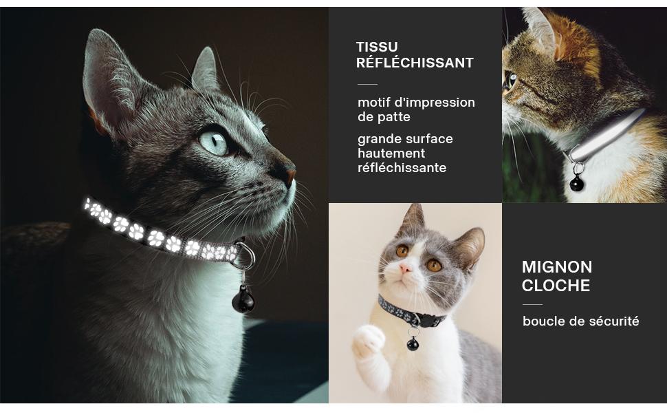 collier de chat
