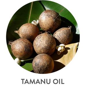 tamanu oil for face