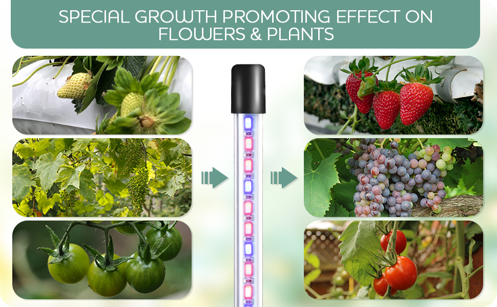 grow lights with base for indoor plants