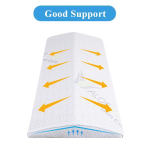 Ergonomic Design Lumbar Sleeping Pillow