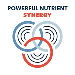 Powerful Nutrient Synergy
