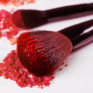 makeup brush set 2