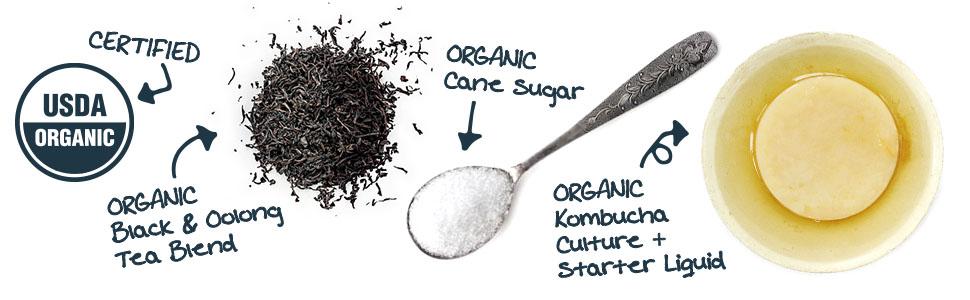 USDA organic kombucha tea culture starter sugar