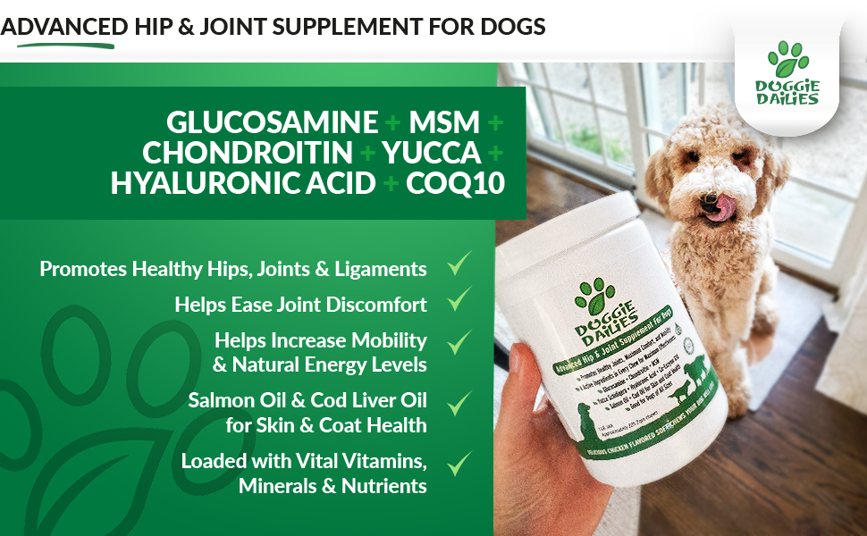 Glucosamine for dogs with chondroitin and MSM, palm oil free formula, made in the USA