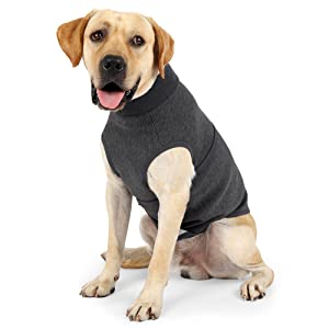 dog anxiety  relief vest