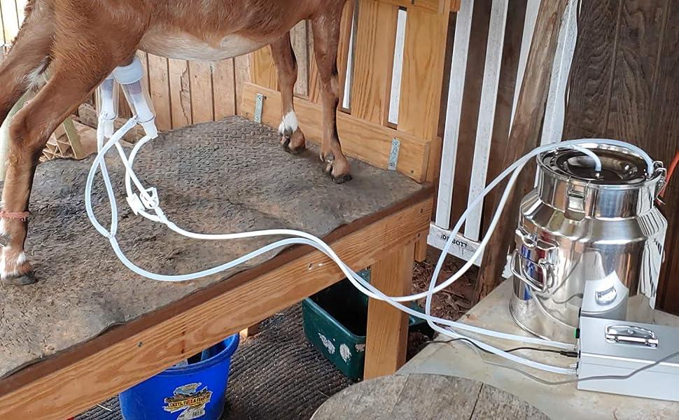 hantop milking machine