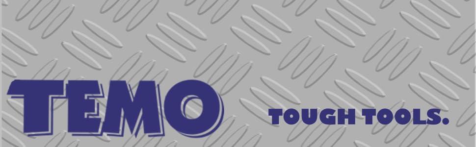 TEMO Logo Header