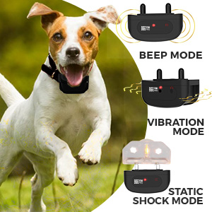 Dog Training Collar with Remote | Long Range 1600'