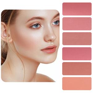 6 Color Blush