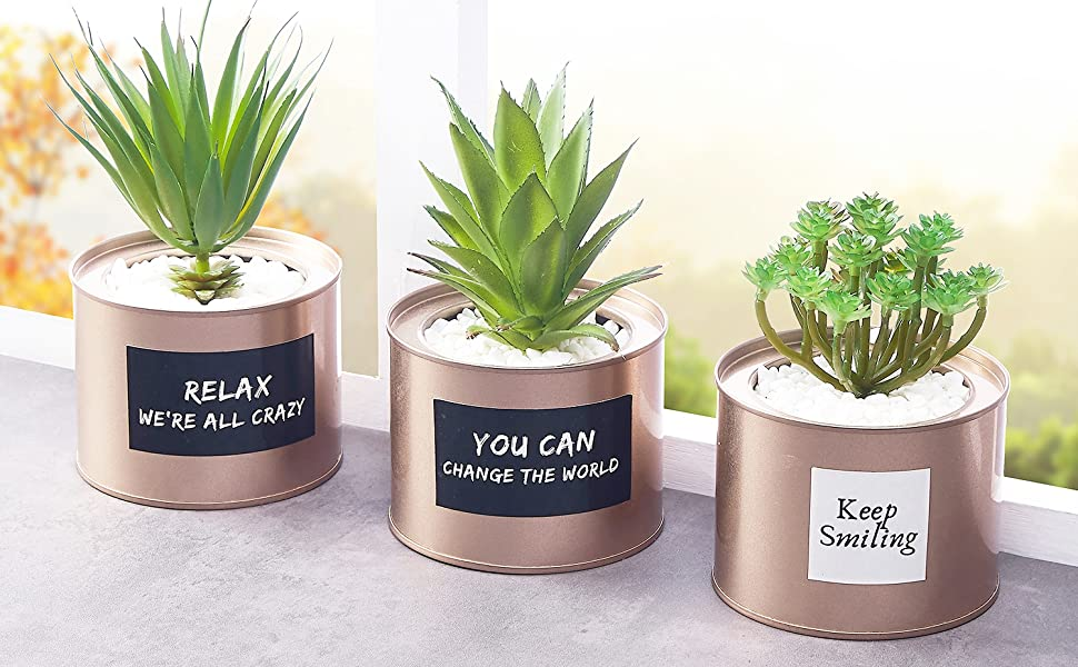 desk plants for women office plants for room small fake plants plant decor for bedroom  Artificial Succulent Plants for Women Desk – Fake Succulent Plant Set – Office Decor Faux Succulents in Rose Gold Pots – Mini Succulent Decor for Bedroom Bathroom Bookshelf Dorm Accessories 3-Pack a4ce1b24 b206 44f2 a0f6 396c9027dffe
