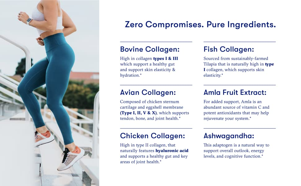 Flyby collagen powder is made up of chicken, bovine, fish & avian sources + ashwagandha & alma fruit