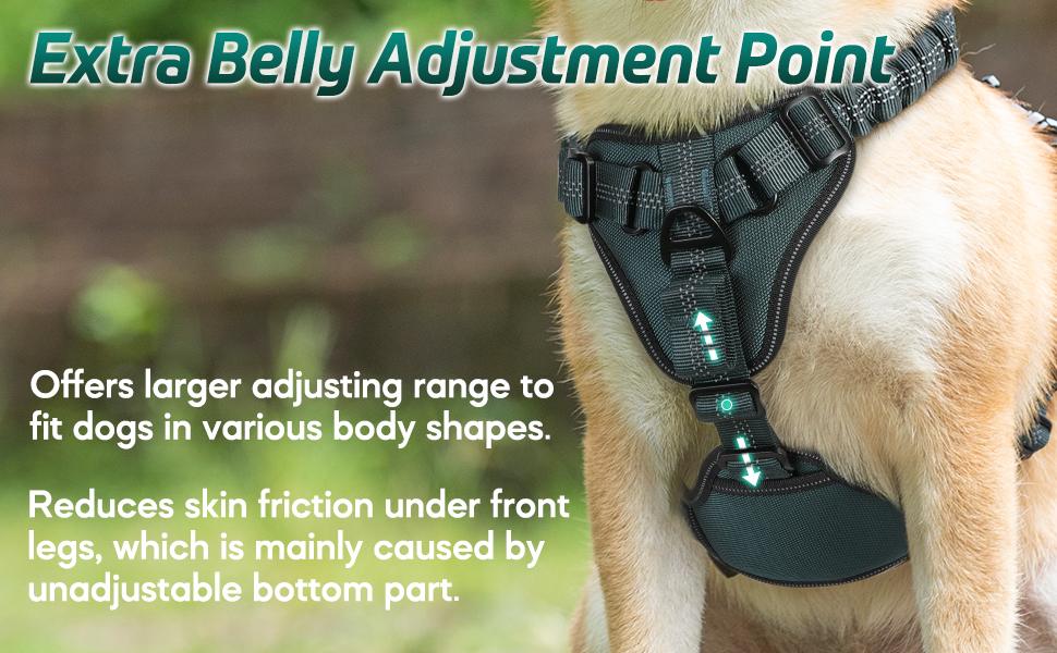 rabbitgoo Dog Harness - Adequate Buffering with Flexible Neck Straps to Reduce Shocks