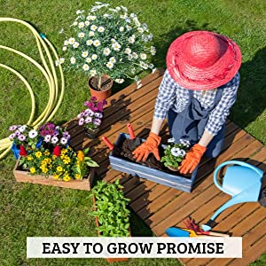 easy to grow promise