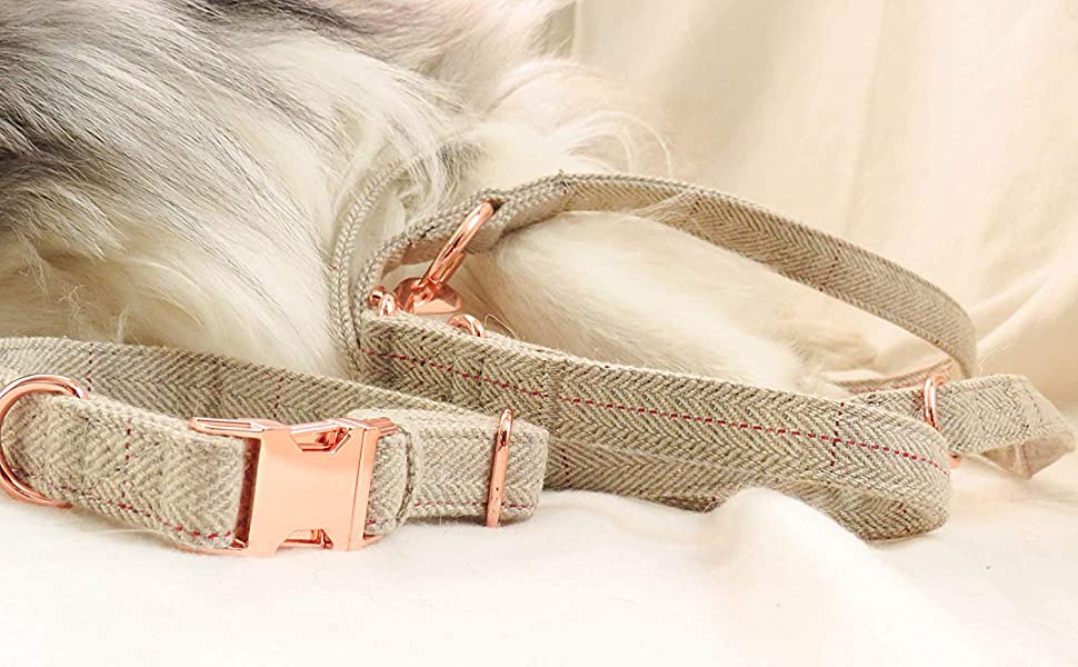 ROSE GOLD DOG COLLAR AND LEASH