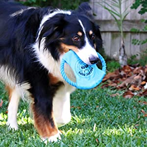 rescue dog pacific pups rescue dog frisbee fetch catch tug toy durable toys for medium dogs large
