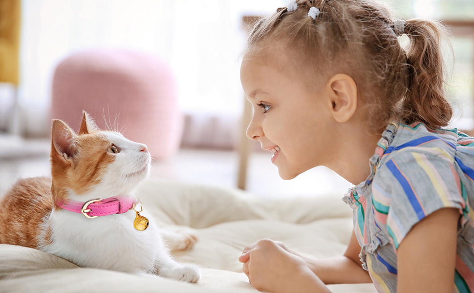 Cat Collars with Bell