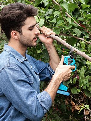 30mm pruning shears