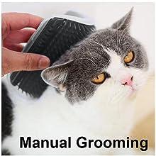 cat self comb