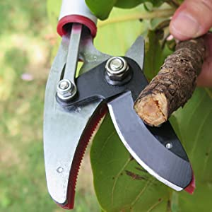 Mesoga tools high carbon steel blade pruner To provide cutting performance, cuts up to 1/2 inch
