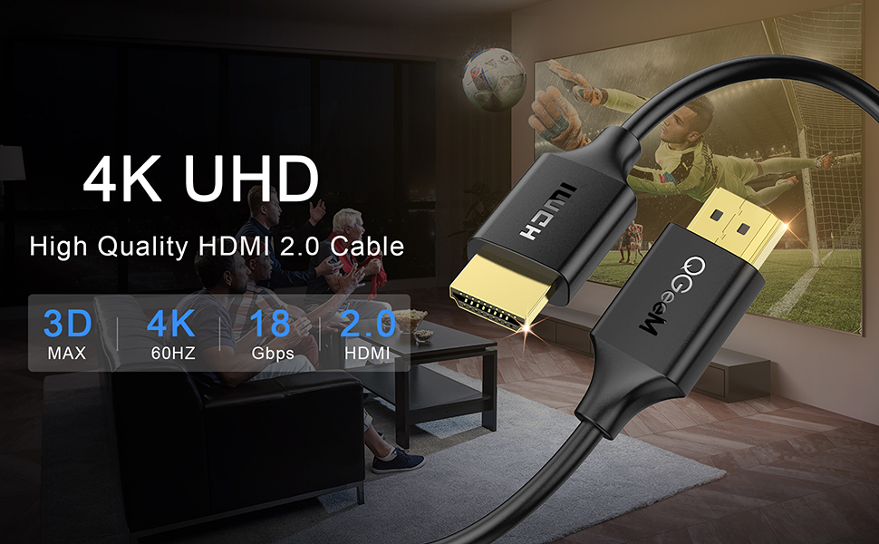 1hdmi 2.0 cable