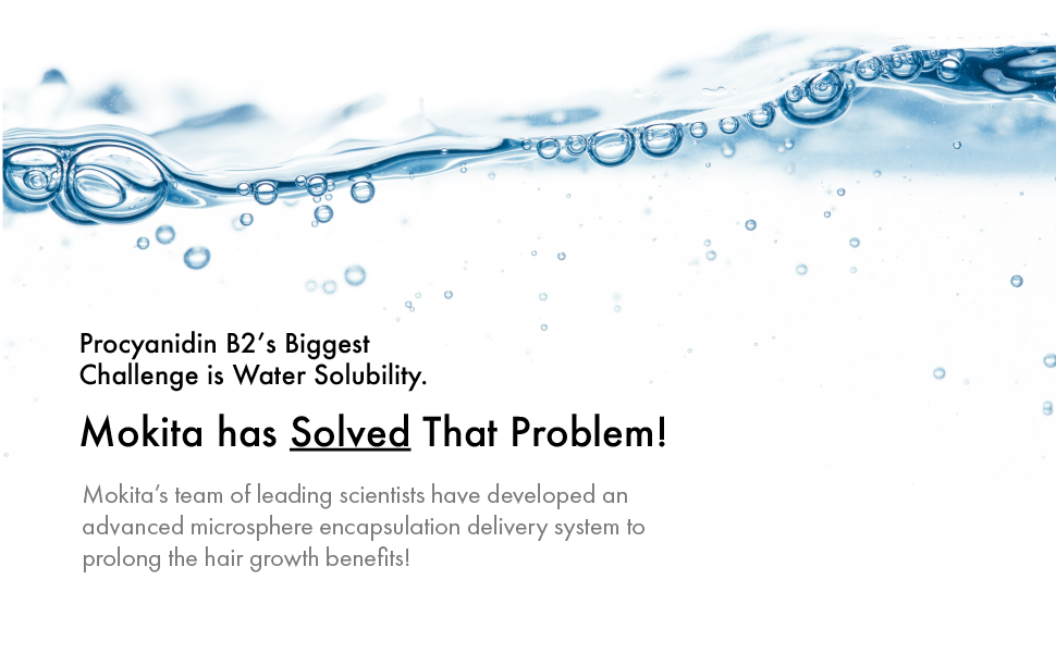 procyanidin b2's biggest challenge is water solubility. Unitl now. Mokita has solved that problem
