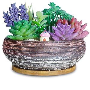 8 Inch Succulent Pots