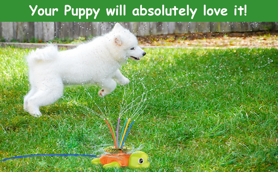 Your puppy will absolutely love it! spray water summer fun for your dog