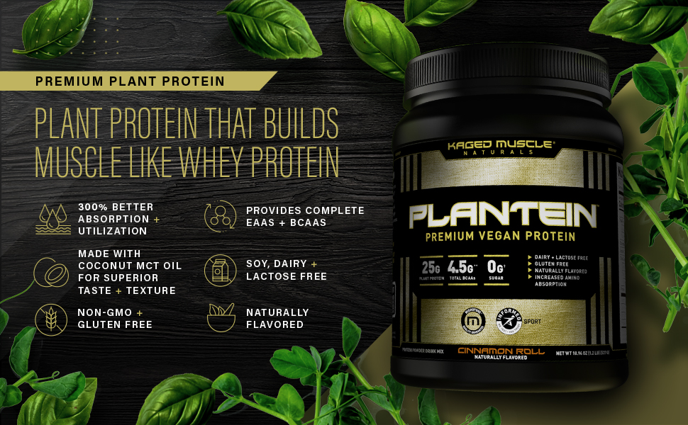 vegan protein poweder plant pea protein isolate muscle post workout bcaa leucine