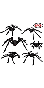 6 Pack Spiders