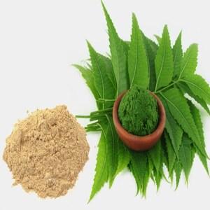 neem powder 1