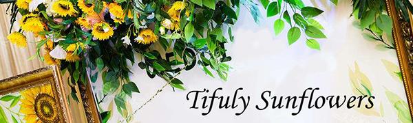Tifuly sunflowers