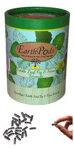 EarthPods Ficus Fiddle Leaf Fig Tree Pothos Monstera Organic Plant Food Fertilizer Spikes